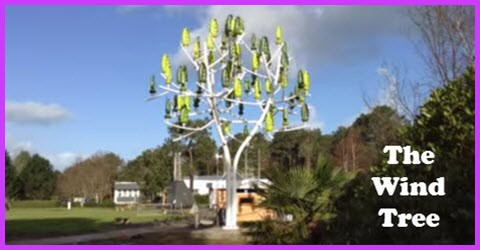 The Wind Tree