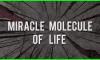 Miracle Molecule of Life